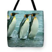 King Penguins Going To Sea Tote Bag