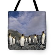 King Penguins On Rocky Beach South Tote Bag