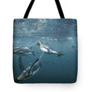 King Penguins Swimming Macquarie Isl Tote Bag