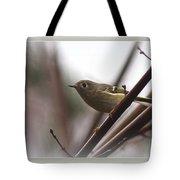 King - Ruby Crowned Kinglet - Bird Tote Bag