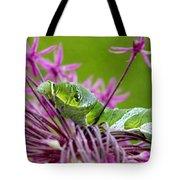 King Swallowtail Caterpillar Tote Bag