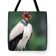 King Vulture In Breeding Colors Tote Bag