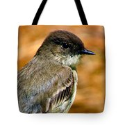 Kingbird Chillin Tote Bag