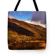 Kingdom Of Nature. Scotland Tote Bag by Jenny Rainbow