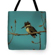 Kingfisher On Limb Tote Bag
