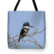 Kingfisher On Mesquite Tree Tote Bag