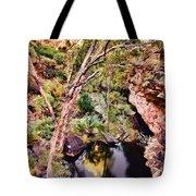 Kings Canyon V9 Tote Bag