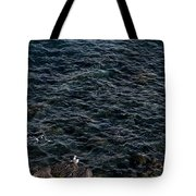 Seagulls At Cliffs Ready To Fish In Mediterranean Sea - Kings Of The World Tote Bag