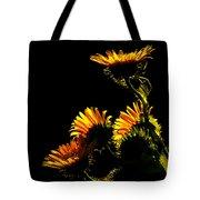 Kiss The Sun Tote Bag