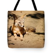 Kit Fox On Campus Tote Bag