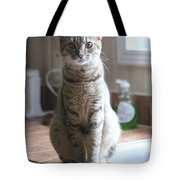 Kitchen Cat Tote Bag