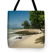 Kite Beach Kanaha Beach Maui Hawaii Tote Bag