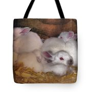 Kits In A Box Tote Bag