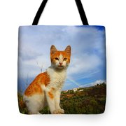Kitten And Rainbow Tote Bag