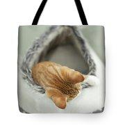 Kitten In An Igloo Tote Bag