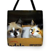 Kittens In A Box Tote Bag
