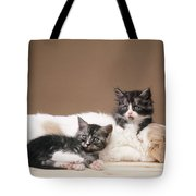 Kittens Lying With Puppy Tote Bag