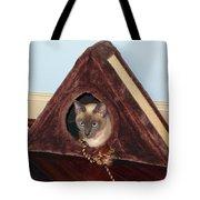Kitty A-frame Tote Bag