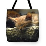 Kitty In The Window Tote Bag