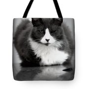 Kitty On A Car Tote Bag