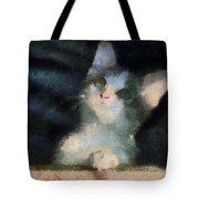 Kitty Photo Art 05 Tote Bag