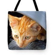 Kitty Under The Hood Tote Bag