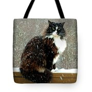 Kittycat In The Snow On The Fence Tote Bag