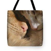 Kity Kat Love Tote Bag