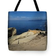 Kiwanda Beach Tote Bag