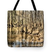 Kneeling On The Edge Tote Bag