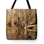 Knees And Reflections Tote Bag