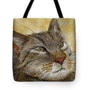Knowing Look Of Wisdom Tote Bag