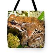 Knudsen Thin Toed Frog Tote Bag