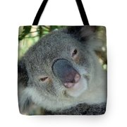 Koala Face Tote Bag