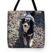 Kody 2 Tote Bag