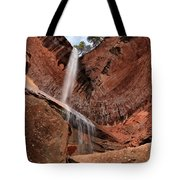 Kolob Canyons Falling Waters Tote Bag