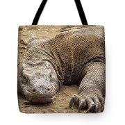Komodo Dragon Male Basking Komodo Island Tote Bag