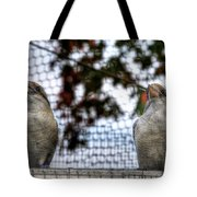 Kookaburra's On Guard At The Buffalo Zoo Tote Bag