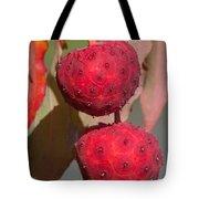 Kousa Dogwood Fruit Tote Bag