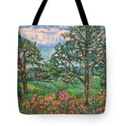 Kraft Avenue In Blacksburg Tote Bag