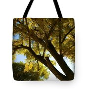 La Boca Ranch Cottonwood Tote Bag