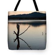 La Estanca-perdiguero - 2 Tote Bag