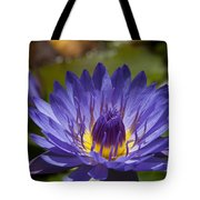 La Fleur De Lotus - Star Of Zanzibar Tropical Water Lily Tote Bag