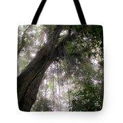 La Tigra Rainforest Canopy Tote Bag
