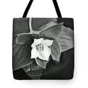 La Vie En Noir Et Blanc Tote Bag