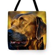 Lab Puppy At Sunset Tote Bag