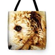Labradoodle Dog Art - Sharon Cummings Tote Bag