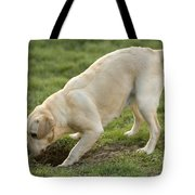 Labrador Checking Hole Tote Bag