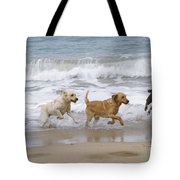 Labrador Dogs Running Tote Bag