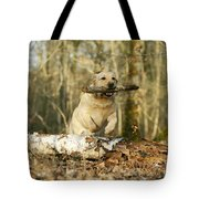 Labrador Jumping With Stick Tote Bag
